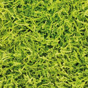 Blanchet Viniti frisure de calage papier vert anis